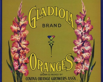 GLADIOLA ORANGES CRATE LABEL