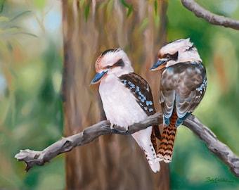 Kookaburras unser Lachen gefiederte Freunde