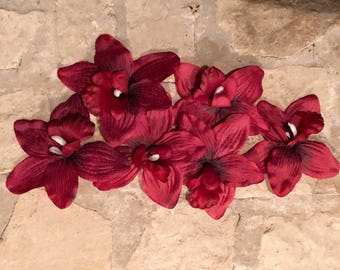 6 Large Red Cymbidium Orchids