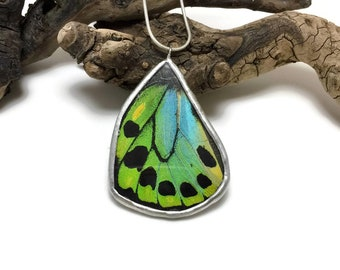 Real Butterfly jewelry, butterfly wing Necklace, butterfly jewelry, handmade real butterfly necklace, blue birdwing Pendant RARE!