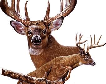 deer jumping decal, full color wild deer decal, realistic deer sticker, wildlife laptop sticker, animal vinyl decal, vinyl sticker