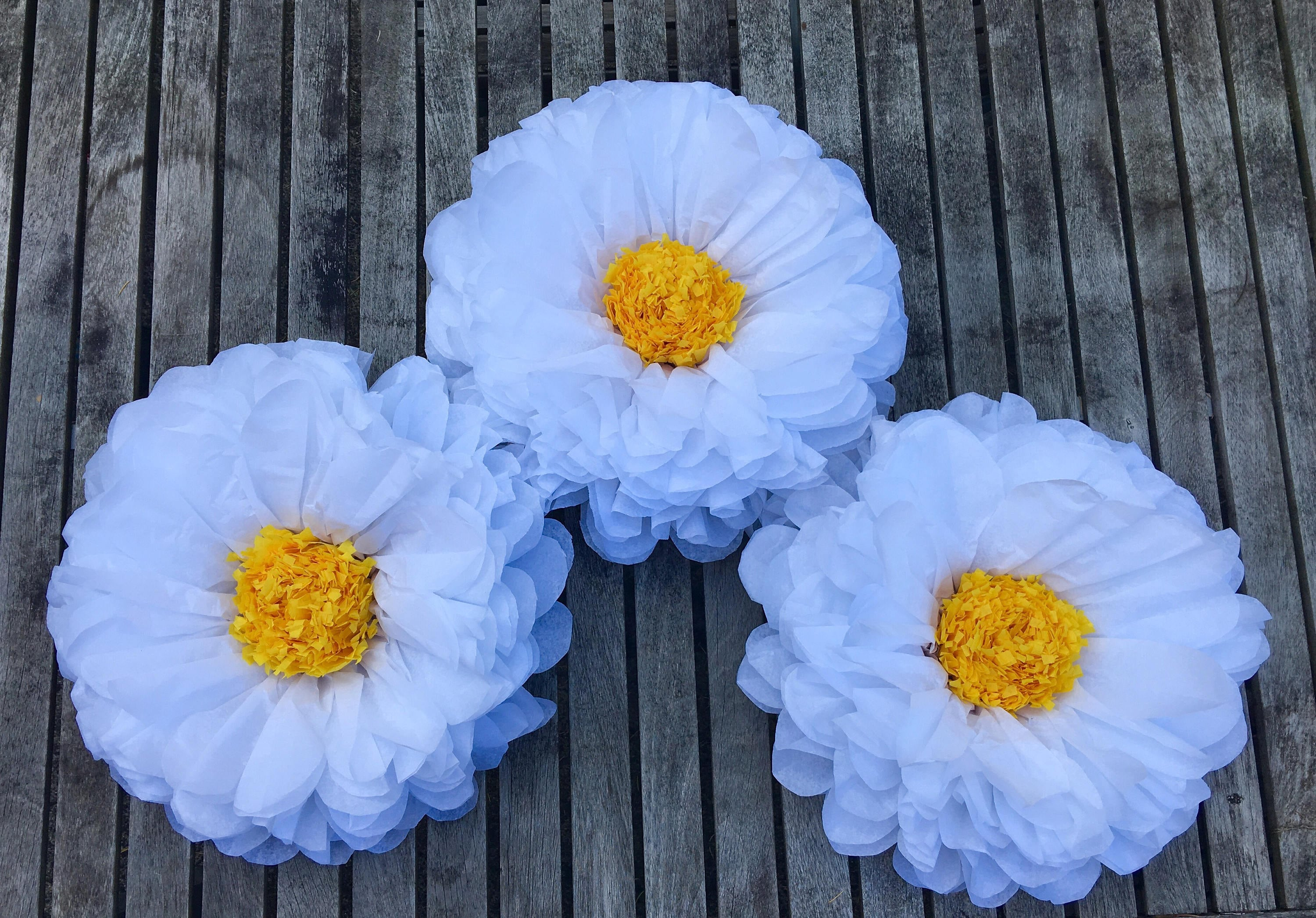 Large paper daisy 14 large tissue paper flowers party zoom izmirmasajfo Image collections