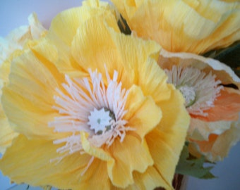 Bright Yellow Icelandic Poppies Large flowers that  will brighten any room.