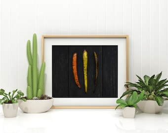 carrot v. one //  food photography print // kitchen decor // dining room // minimalist art print // rustic farmhouse wall art