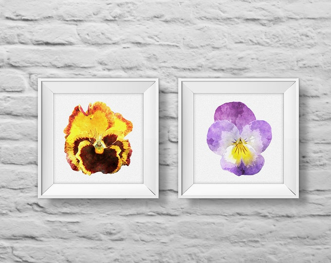 Floral Bouquet #8 PANSIES (set of two) unframed square art prints, nature, floral, watercolor, photography, wall decor. (R&RBOUQUET8)