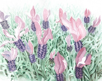 lavender, ORIGINAL watercolor painting, FREE shipping