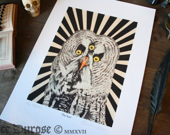 Great Grey Owl 'The Seer' A3 Fine Art Print. Third eye, Occult, Witch art. Magic Bird, Second Sight. The Unholy Trinity. Giclee.