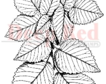 Deep Red Rubber Stamp Foliage Leaf Cluster