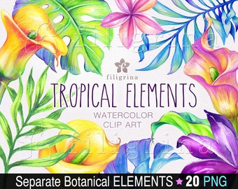 Tropical WATERCOLOR clip art. 20 PNG separate botanical elements, exotic flowers, palm leaves, paradise, jungle nature. Read how to use