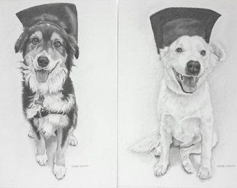 Miniature drawing pencil portrait pet portrait pet drawing