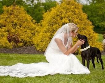 Pet's Wedding Collar Made-to-Order