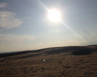 Sun Dazzled