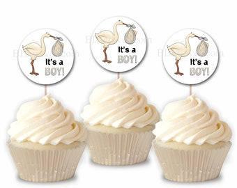 Baby Shower Stork Cupcake Toppers, Party Picks, Set of 12 Cupcake Toppers CT007