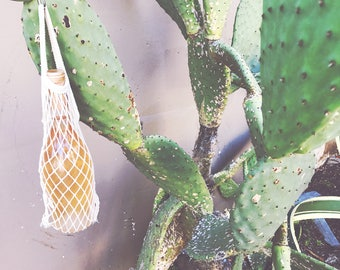 Reusable Eco Friendly Bottle  Bag