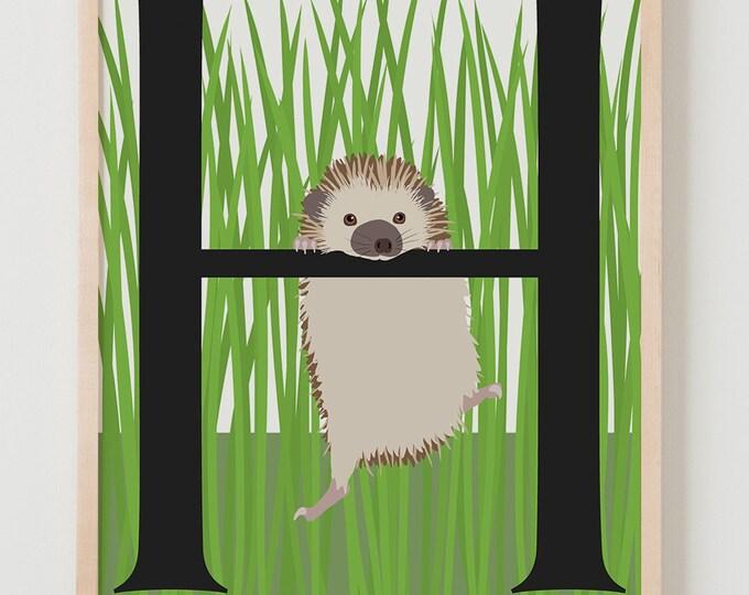 Animal Alphabet, H is for Hedgehog Fine Art Print