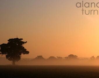 Dawn Mist, England. Fine Art Photography, Wall Decor, Travel Photography, Tree, Mist, Countryside, Tonal, Landscape Photograph