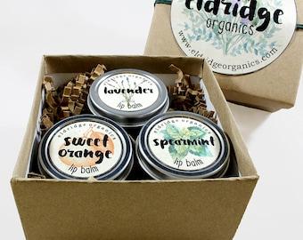 Organic Lip Balm Gift Set