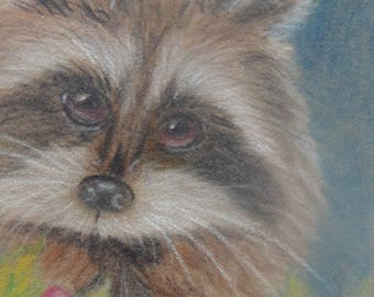 Cute little raccoon in colored pencils on suedeboard