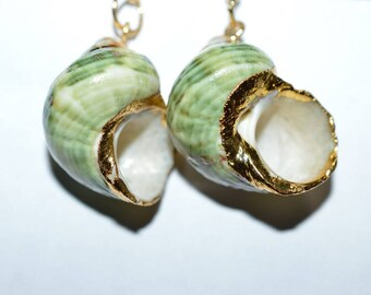 Beautiful Vintage Earrings - Full Shell, Gold Edged, Green Shell Earrings (1017177)