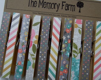 Clothesline Photo Display, clothespin set- Country Gray