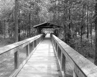 Digital 8x10 Print of Covered Walkway - Black and White - Photograph Instant Download