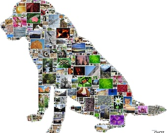 Dog Mosaic Poster – OOAK custom collage from your personal photos