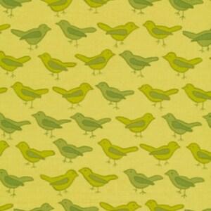 01934  - 1/2 yard of  Valori Wells Nest Birds in Sage color