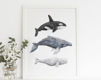 Whale Art Print, Whale Print, Watercolor Art, Coastal Art Decor Humpback Beluga Orca Nautical Nursery Top Sellers Printable Wall Art Digital