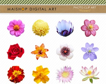 Flowers Clip Art + Digital Collage Sheet Flowers Images for Digital Scrapbooking, Invites, cards, Collages, Crafts, Prints, Decoupage...