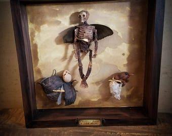 Cryptozoology Cabinet of Curiosities oddities Original wall art