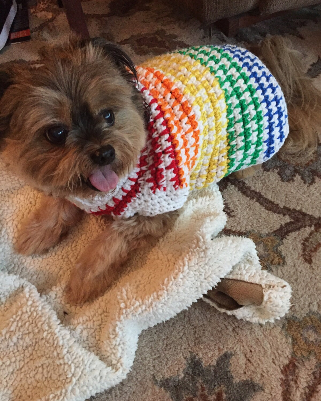 Funky Häkeln Hund Pullover Muster Embellishment - Decke Stricken ...