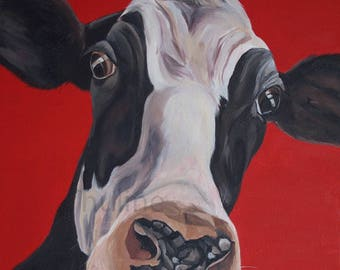I'm the funniest too, Friesian cow