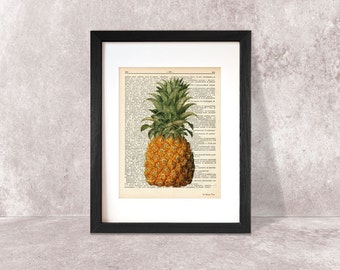 Pineapple print-pineapple dictionary print-Kitchen wall art-pineapple on book page-botanical print-tropical fruit print-NATURA PICTA-DP047