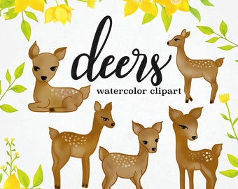 Watercolor Deer Clipart, INSTANT DOWNLOAD, Deer Clipart, Yellow Florals Clipart, Floral Clipart, Cute Nursery Clipart, Watercolor Flowers