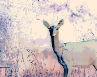Deer Art, Purple Lavender, Woodland Photomontage, Spring Wildlife, Wilderness, Wild Animal, Home Decor, Wall Hanging, Giclee Print 8 x 10
