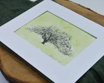 Savannah Tree Art Watercolor Print - Candler Oak