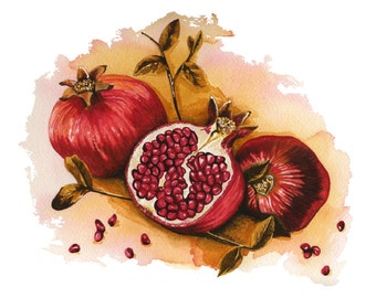 Pomegranates Watercolor Illustration