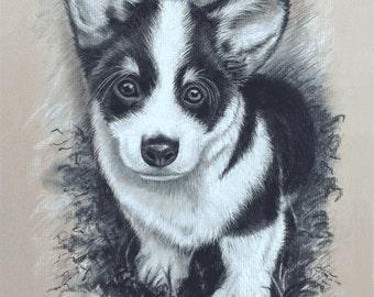 "Pet Portrait black and white charcoal. 9"" x 12"". Your dog, cat, etc."