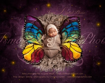 Digital backdrop - Newborn felted wool butterfly 2  - Beautiful Digital background for Newborn Photography - Props download