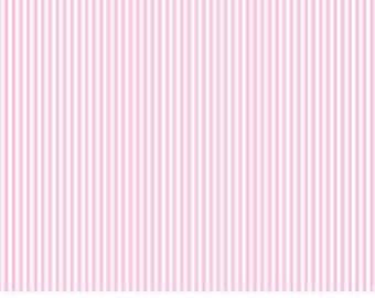 Dear Stella | Dress Stripe in Blush
