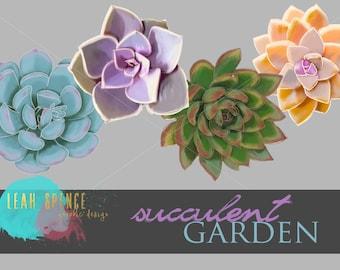 Succulent / Flower Digital Clip Art, Wedding, INSTANT download, Hand Drawn Digital Illustrations, PNG, Flowers,  Digital Drawing, scrapbook