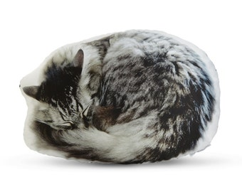 Sleeping Cat Printed Pillow