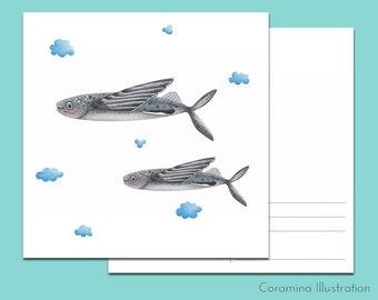 Postcard  flying fish