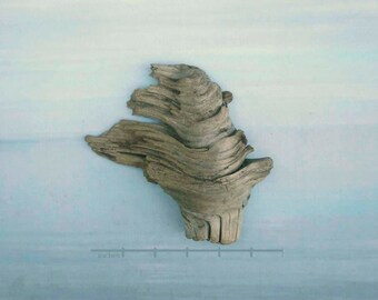 natural raw driftwood Liberty's torch sculpture wood art supply 1003