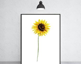 Sunflower art print sunflower watercolor painting, Flower painting, Floral art print, Botanical art