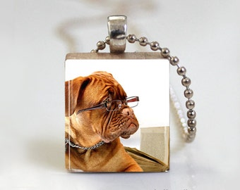 Dog Reading Book Worm - Scrabble Tile Pendant - Free Ball Chain Necklace or Key Ring