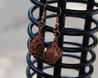 Stone Earrings Putrifide Wood