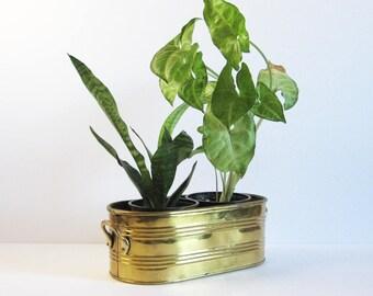 Vintage Oval Brass Planter w Handles - 4x9 Inch Brass Pot - Brass Home Decor - Indoor Garden Cactus Pot Succulent Planter Air Plant Display