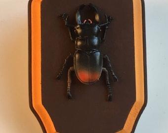 Faux taxidermy beetle