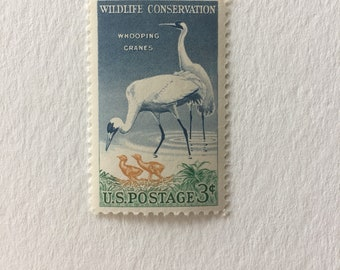 10 Whooping Crane 3c US postage stamps unused - Vintage 1957 - birds nature environment wildlife conservation water fowl